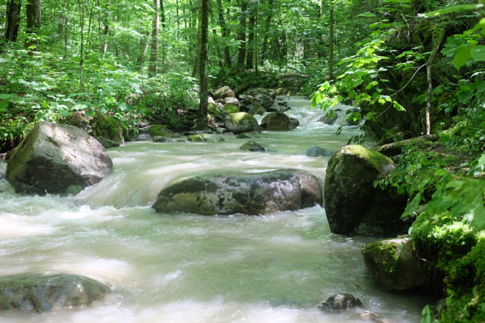 ruisseau rapides randonnée décrocher mont sutton